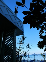 evening light summoning you to the bar - topped by pineapple finials