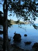quiet moments around the bay