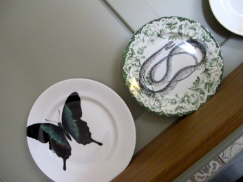 curio plates