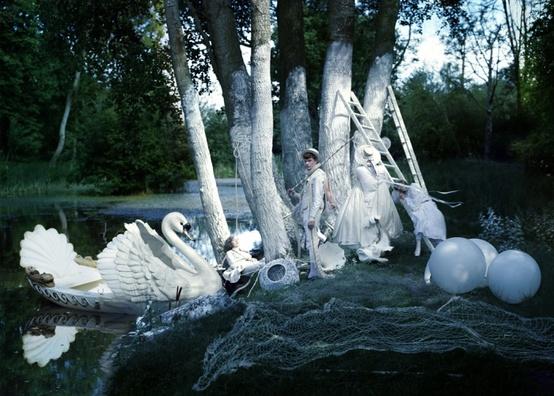 tim walker swan image 2