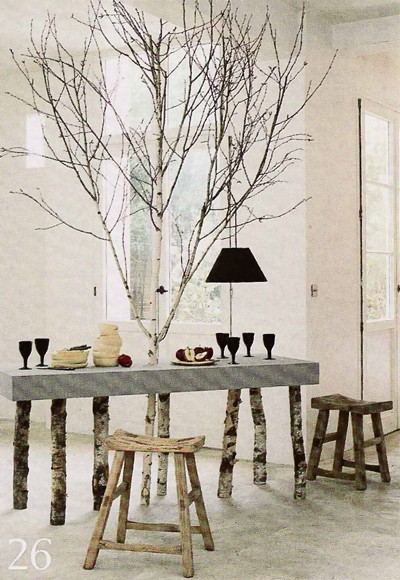 pin silver birch