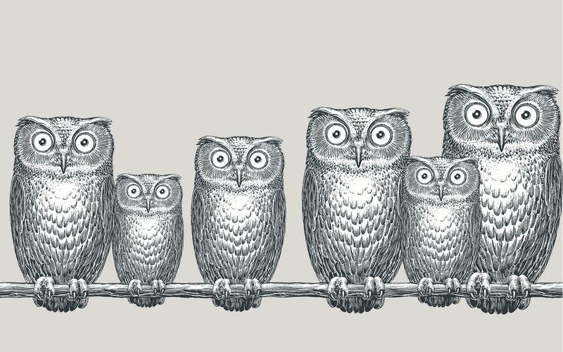 Owl Wallpaper Fornasetti | A Decorative Affair